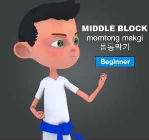 blocks 막기 makgi taekwondo preschool