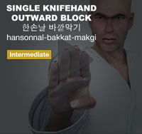 Single Knifehand Outward Block